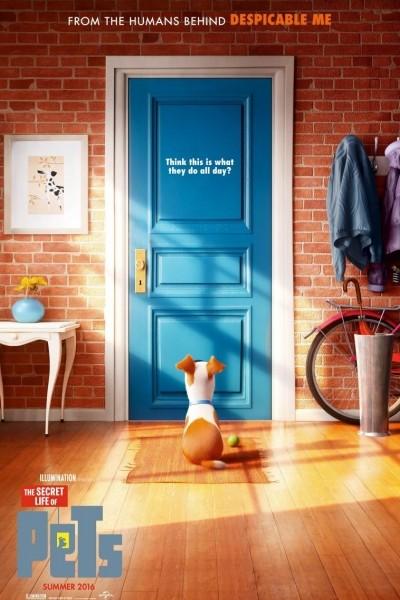Caratula, cartel, poster o portada de Mascotas