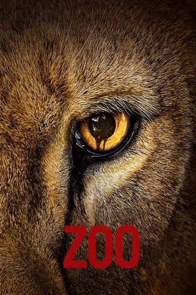 Caratula, cartel, poster o portada de Zoo