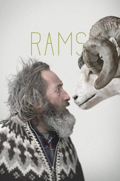 Caratula, cartel, poster o portada de Rams (El valle de los carneros)