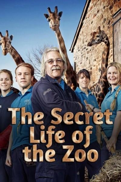 Caratula, cartel, poster o portada de La vida secreta del zoo