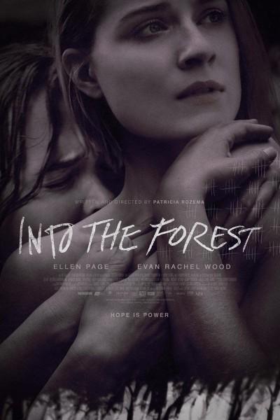 Caratula, cartel, poster o portada de En el bosque