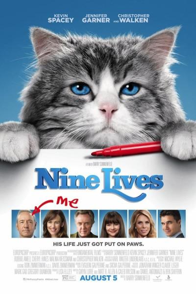 Caratula, cartel, poster o portada de Siete vidas, este gato es un peligro