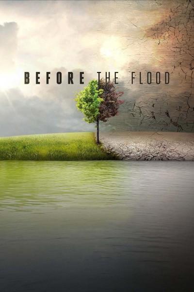 Caratula, cartel, poster o portada de Before the Flood