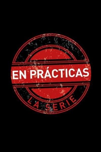 Caratula, cartel, poster o portada de En prácticas