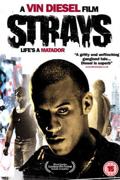Caratula, cartel, poster o portada de Strays