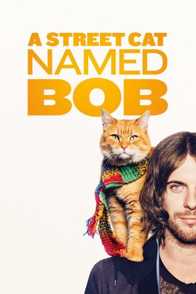 Caratula, cartel, poster o portada de Un gato callejero llamado Bob
