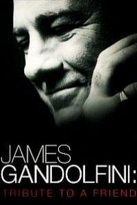 Caratula, cartel, poster o portada de James Gandolfini: Tribute To A Friend