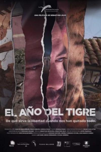 Caratula, cartel, poster o portada de El año del tigre