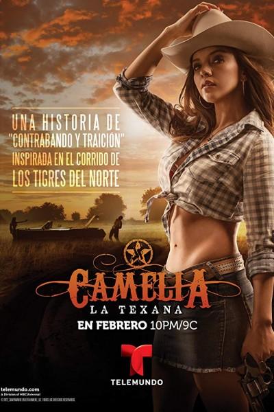 Caratula, cartel, poster o portada de Camelia la Texana