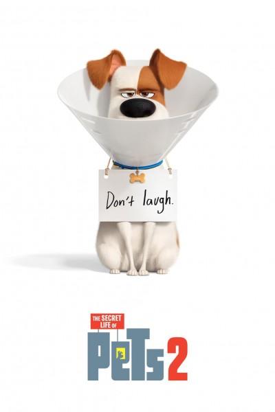Caratula, cartel, poster o portada de Mascotas 2