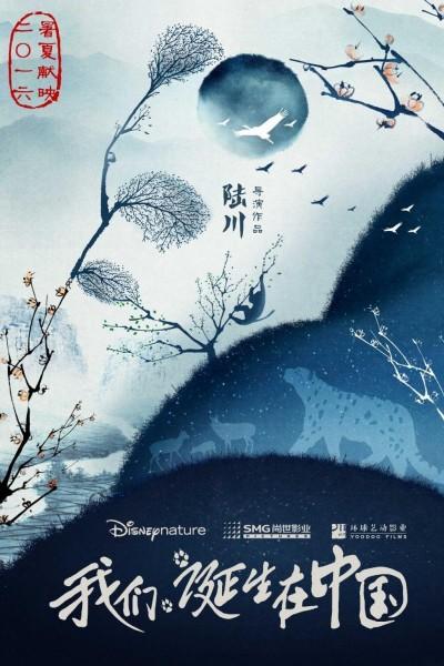 Caratula, cartel, poster o portada de Born in China