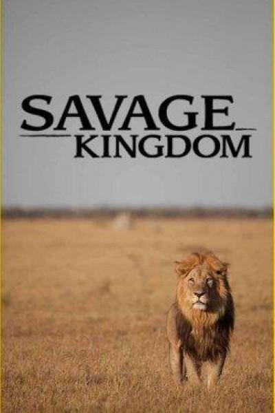 Caratula, cartel, poster o portada de Savage Kingdom