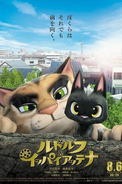 Caratula, cartel, poster o portada de Gatos. Un viaje de vuelta a casa
