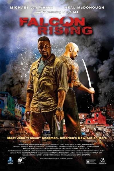 Caratula, cartel, poster o portada de Falcon Rising