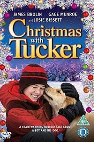 Caratula, cartel, poster o portada de Por siempre Tucker