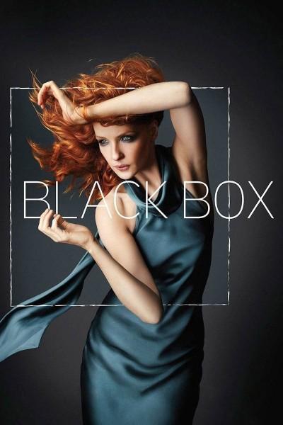 Caratula, cartel, poster o portada de Black Box