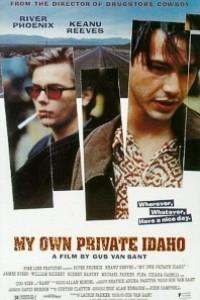 Caratula, cartel, poster o portada de Mi Idaho privado