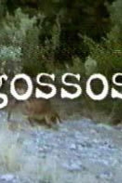 Caratula, cartel, poster o portada de Perros