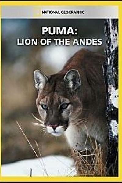 Caratula, cartel, poster o portada de Puma: El león de los Andes
