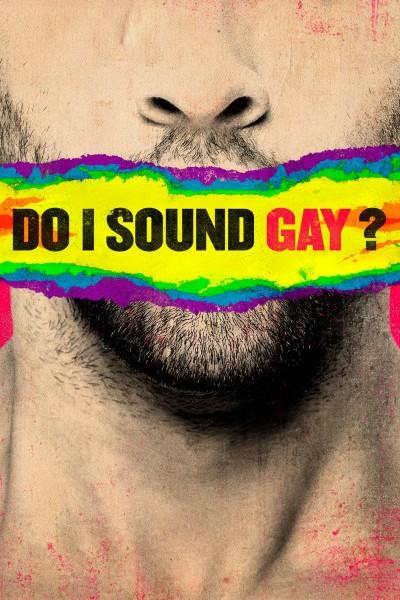 Caratula, cartel, poster o portada de Do I Sound Gay?