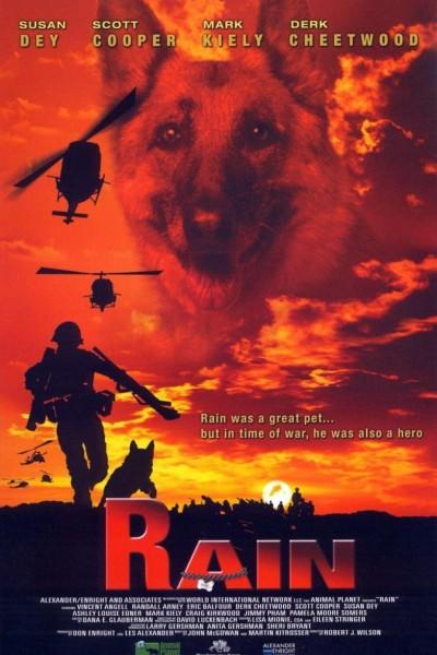 Caratula, cartel, poster o portada de Rain
