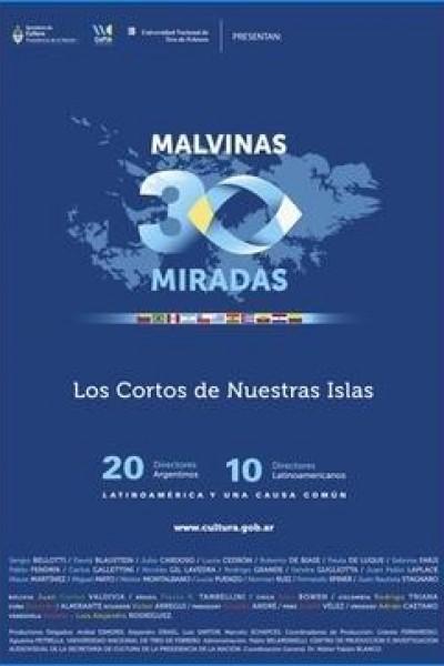 Caratula, cartel, poster o portada de Malvinas, 30 miradas