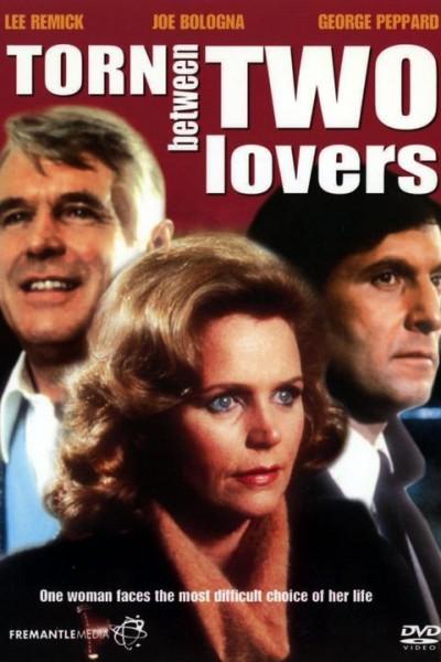 Caratula, cartel, poster o portada de Entre dos amores