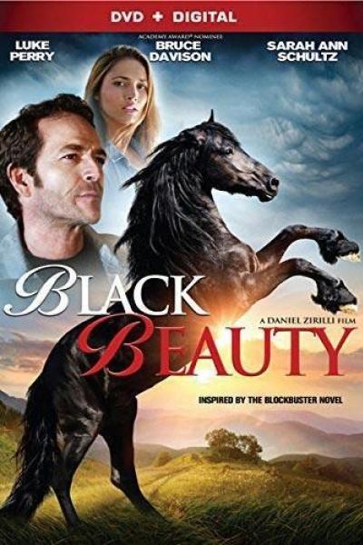 Caratula, cartel, poster o portada de Black Beauty